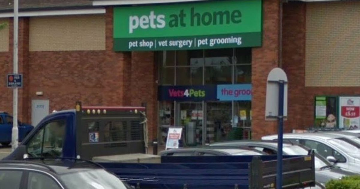 Pets at Home vet kicked and stamped on dog in fit of rage after it bit him